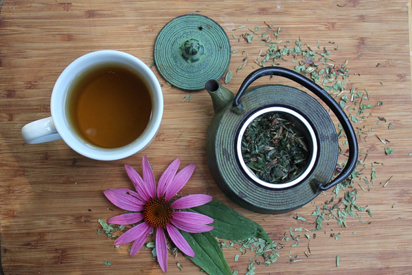 čaj_echinacea